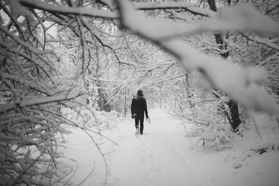 snow day_003