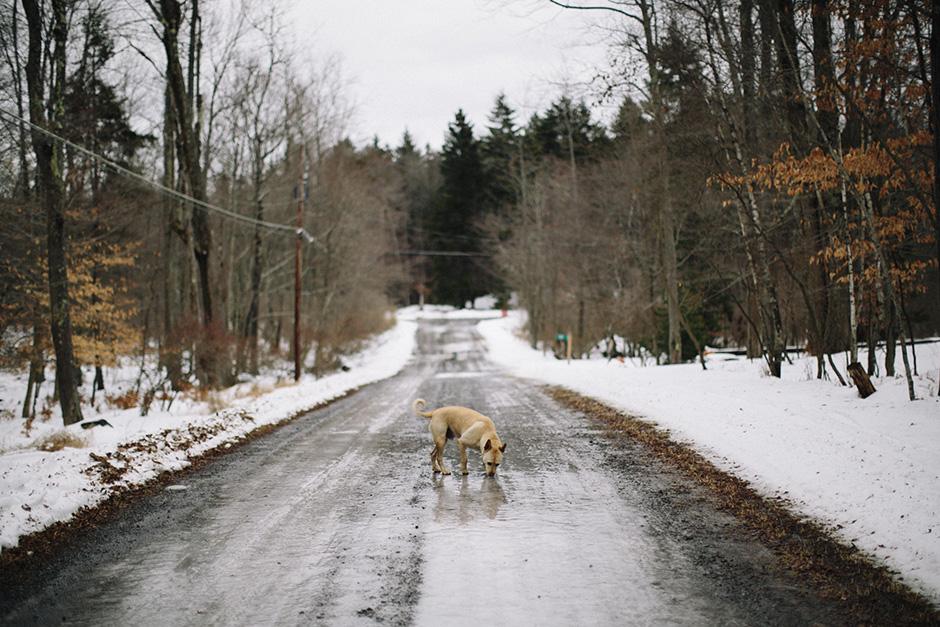winter adventures_001