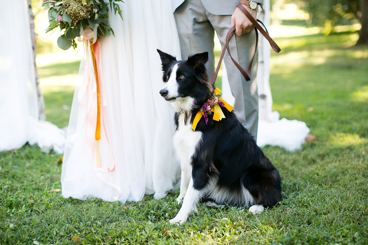 awbury-arboretum-wedding_052